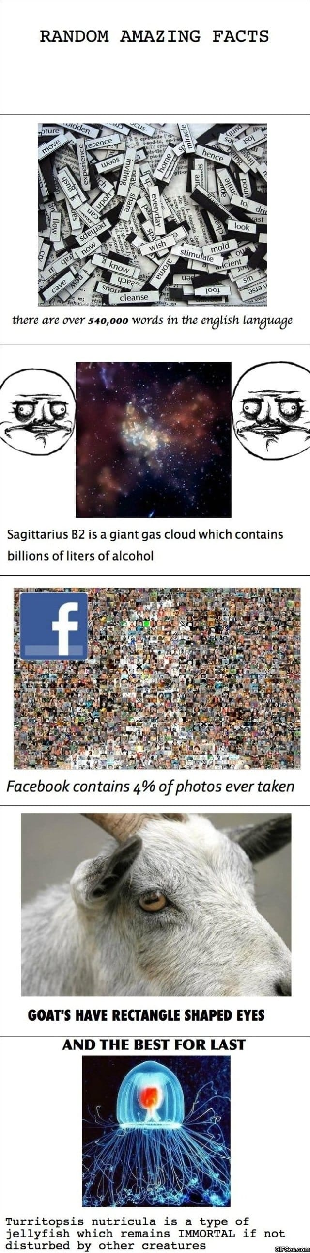 amazing-facts