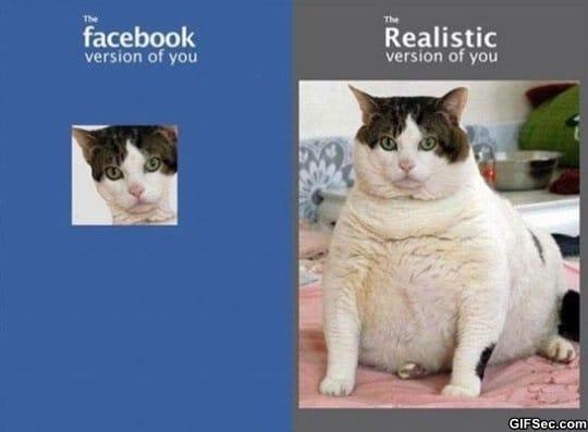 facebook-vs-reality