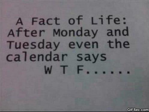 fact-of-life