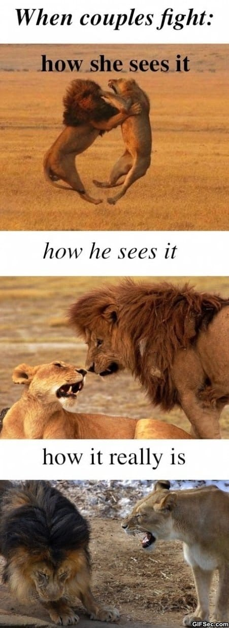 how-she-sees-it-vs-how-he-sees-it