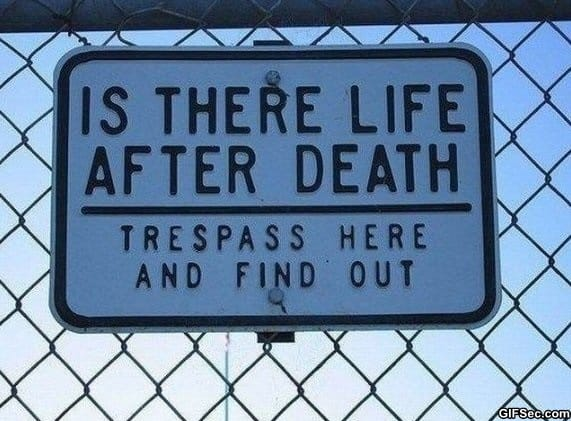 life-after-death