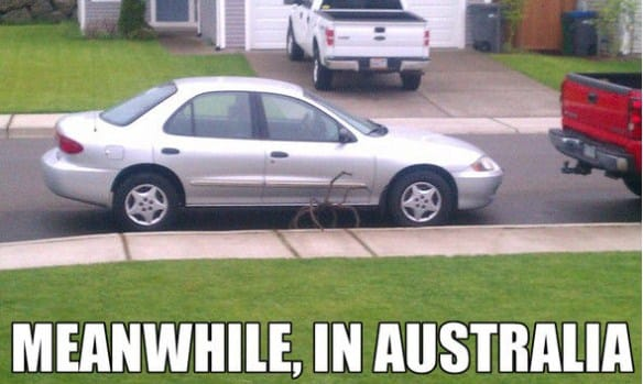 meanwhile-in-australia