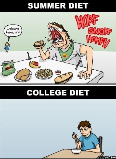 the-diet