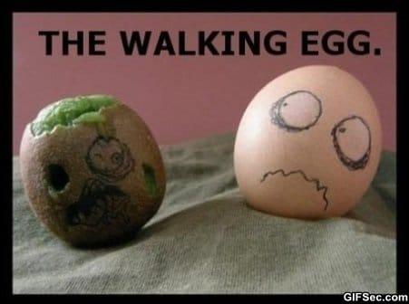 the-walking-egg