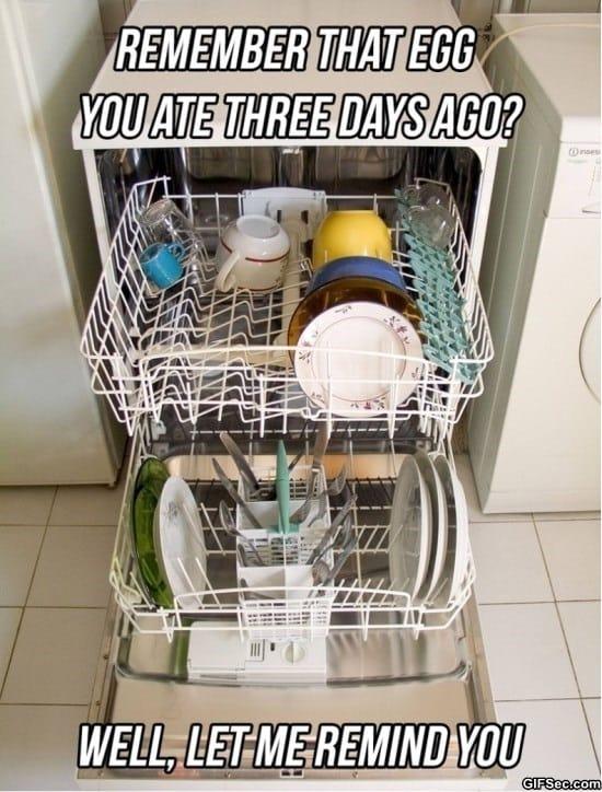 scumbag-dishwasher-meme-funny-pictures