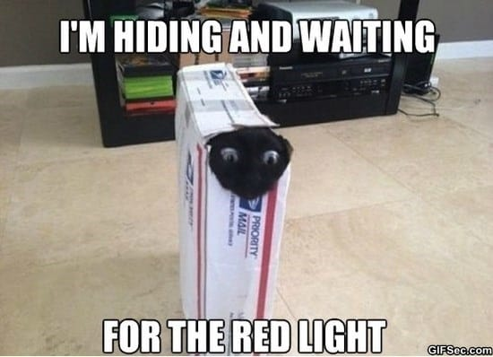 the-red-light-meme-funny-pictures