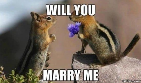 marry-me