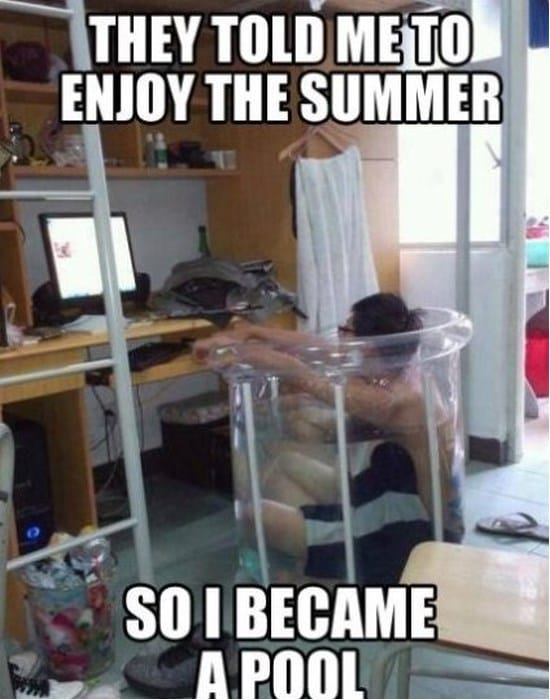 nerd-summer