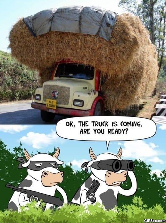 best-funny-pictures-the-hay-heist-meme