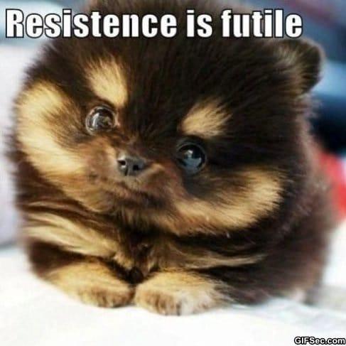 resistence-is-futile