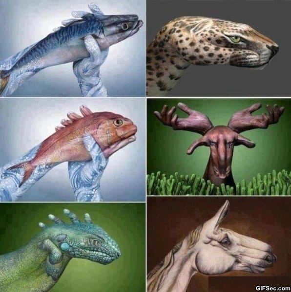 awesome-hand-art-of-animals