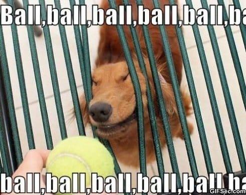 ball-ball-ball