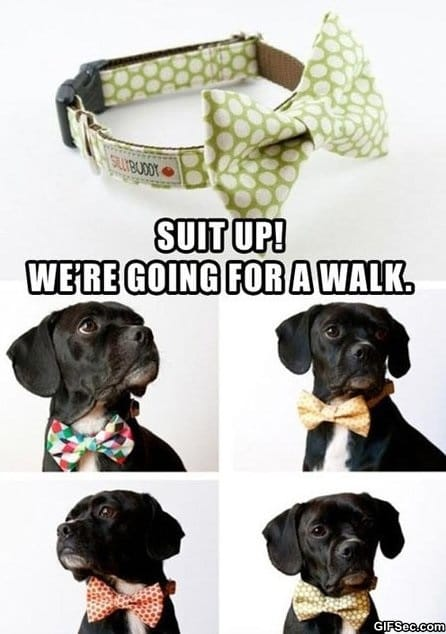 bow-ties-are-cool