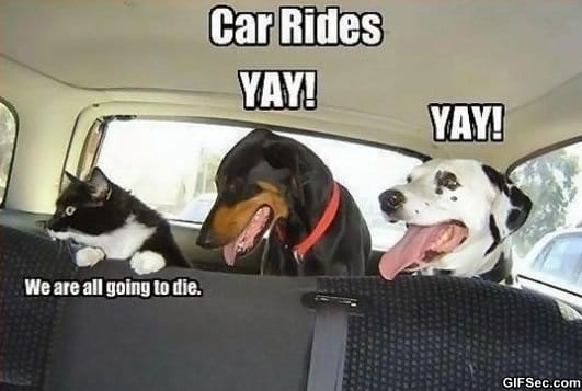 car-rides