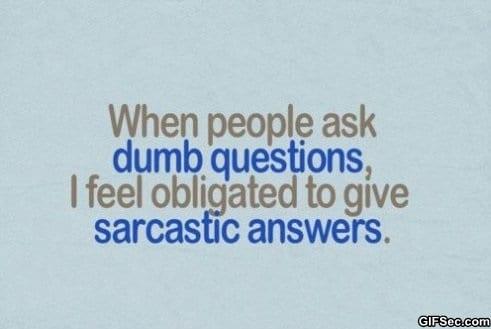 dumb-questions