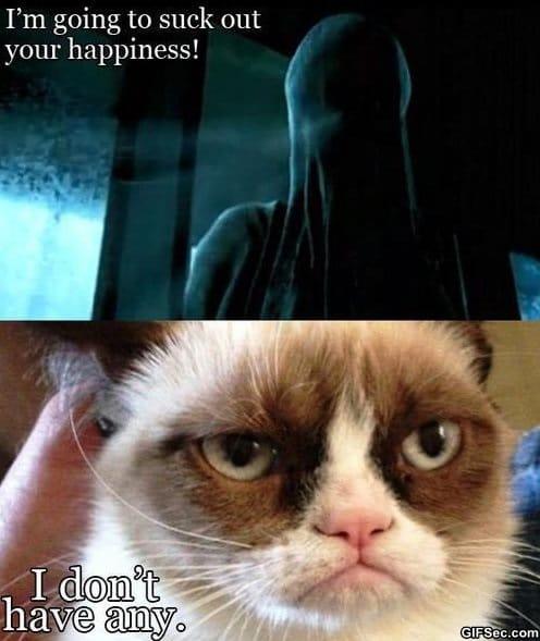 funny-dementors-vs-grumpy-cat