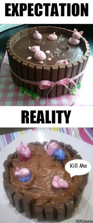 funny-expectation-vs-reality