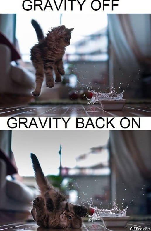 funny-gravity