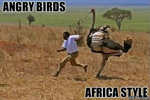funny-meanwhile-in-africa