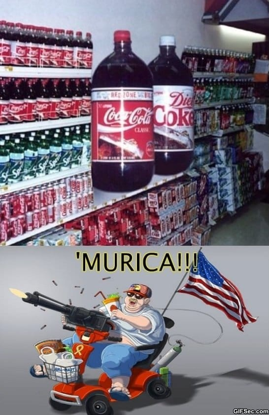funny-picture-meanwhile-in-murica
