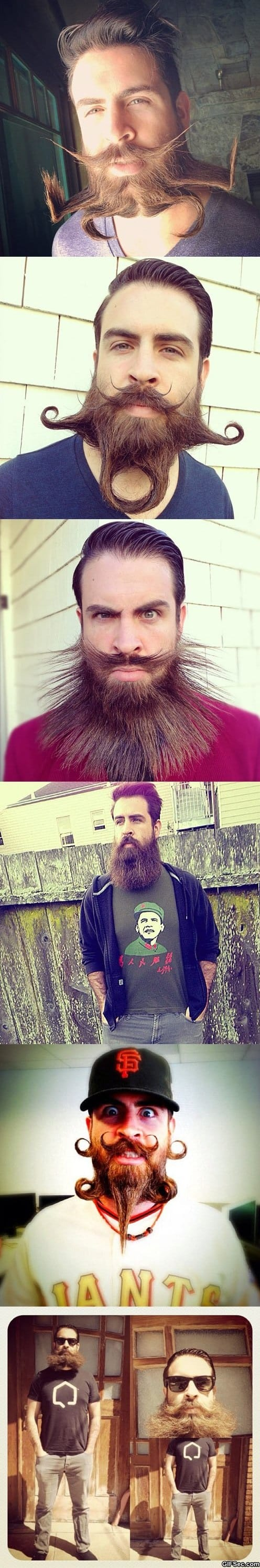 funny-pictures-awesome-beard