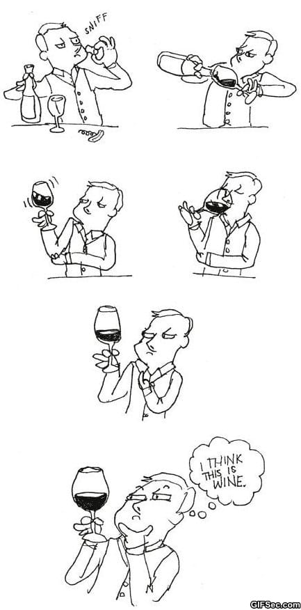 funny-pictures-how-i-taste-wine