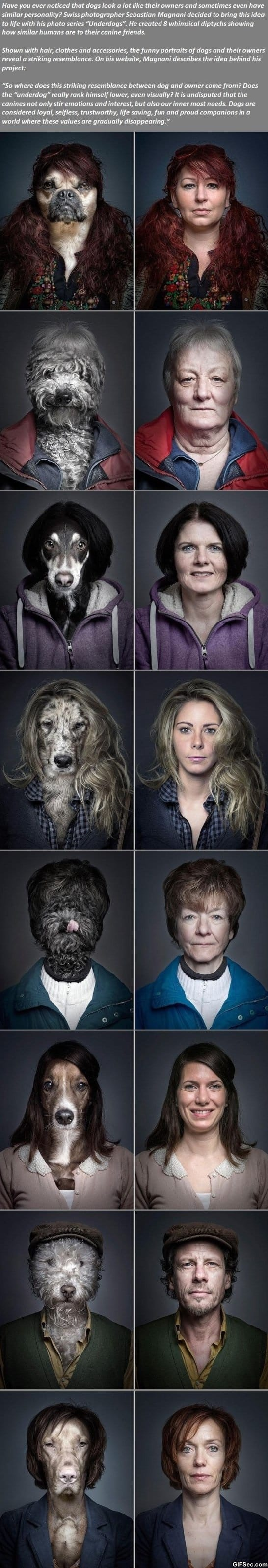 funny-pictures-dogs-looking-exactly-like-their-owners