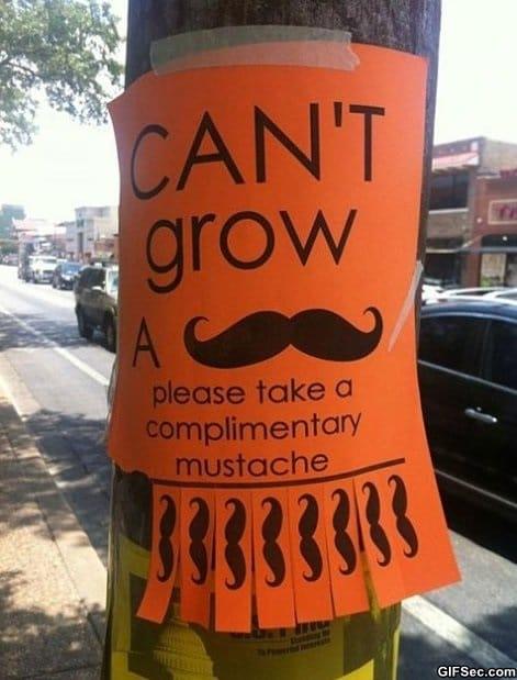 grow-a-mustache