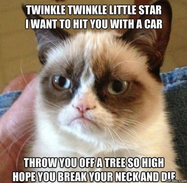grumpy-cat-poem