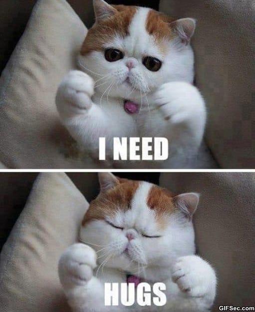i-need-hugs