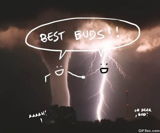 lol-best-buds