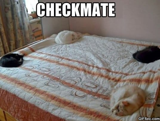 lol-checkmate