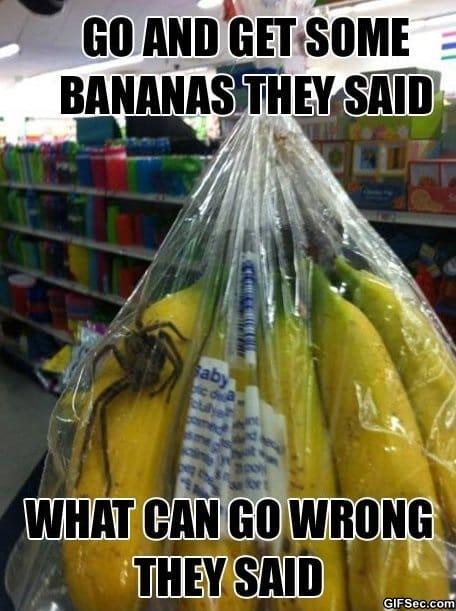 lol-get-some-bananas