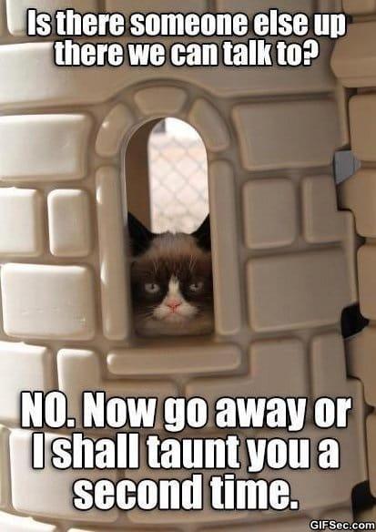 lol-grumpy-cat