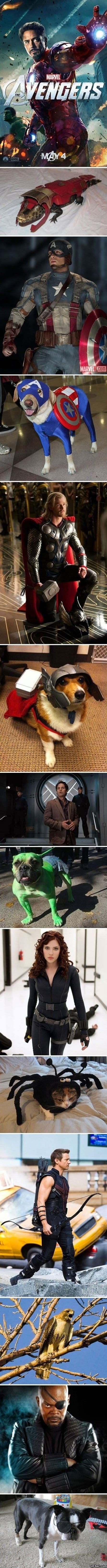lol-awengers-and-their-pets