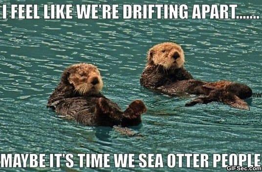 meme-drifting-apart