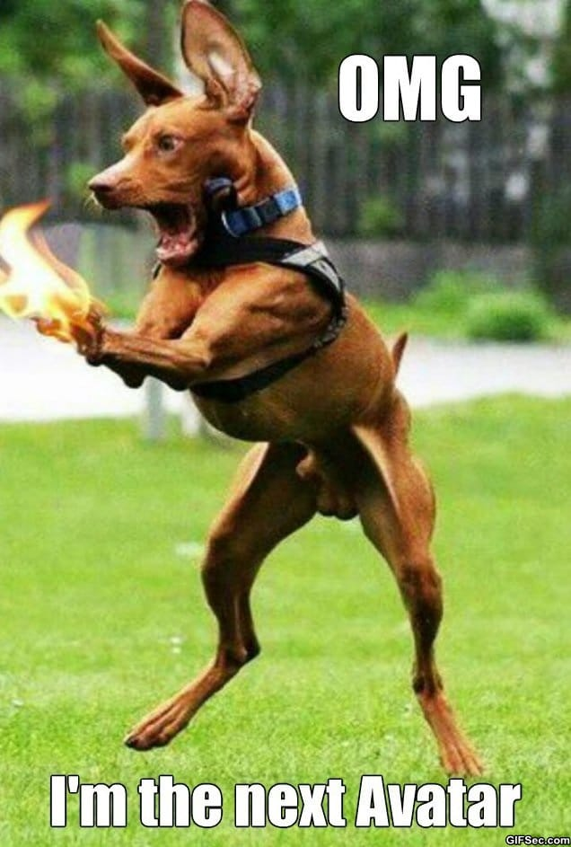 meme-exaggerated-dog