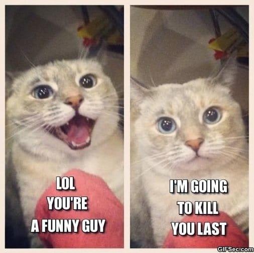 meme-funny