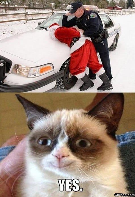 meme-grumpy-cat-vs-santa-gets-arrested