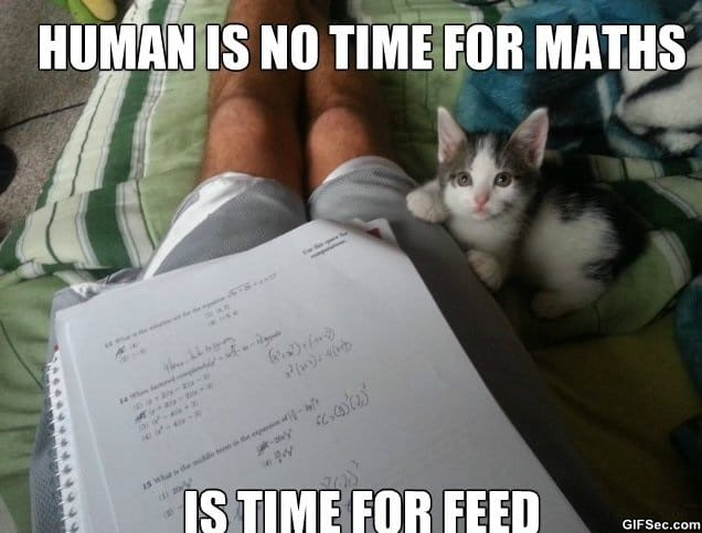 meme-human-is-no-time
