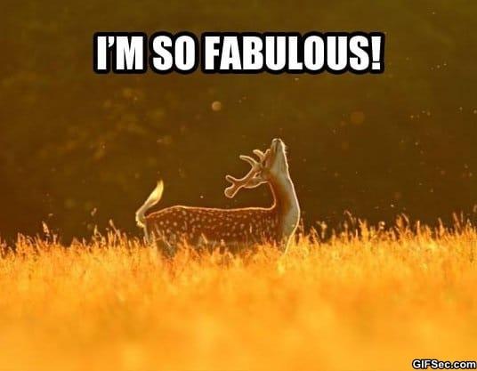 meme-im-fabulous