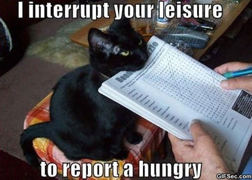 meme-leisure-interruption