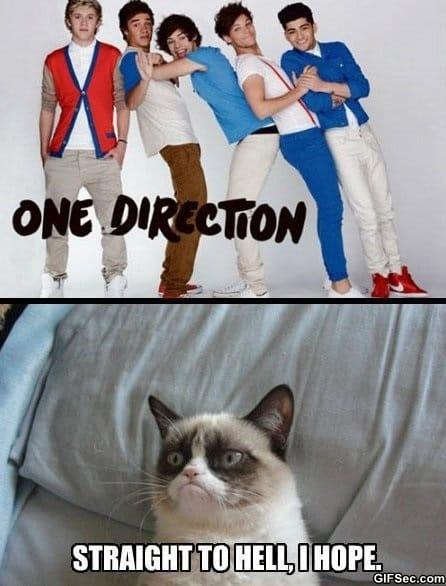 meme-one-direction