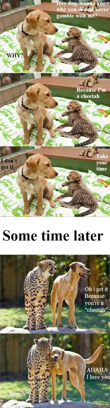 meme-take-your-time