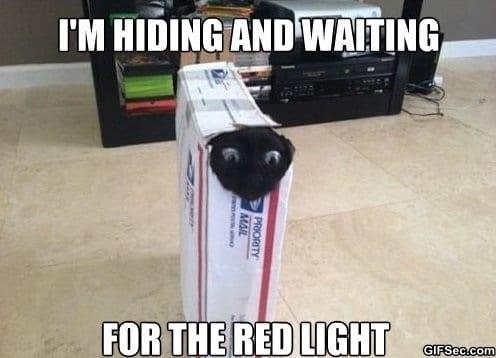 meme-the-red-light