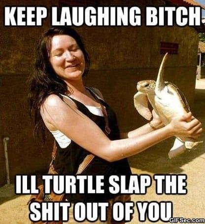 meme-turtle-slap