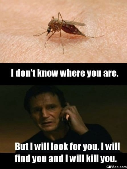 meme-when-i-get-bit-by-a-mosquito