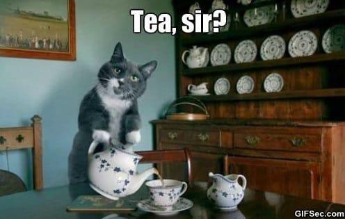 meme-would-you-like-some-tea