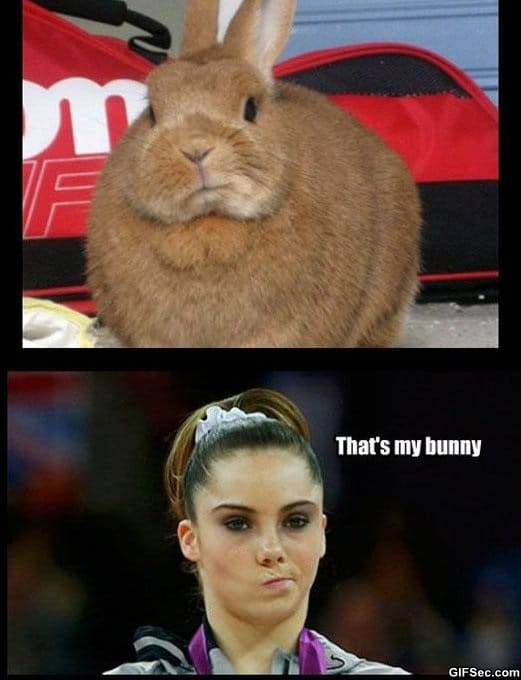 my-bunny