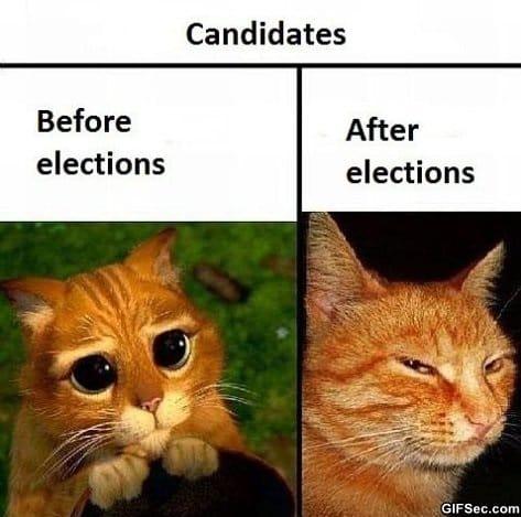 political-candidates